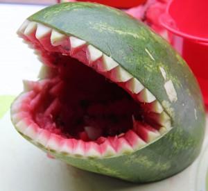 Melone10