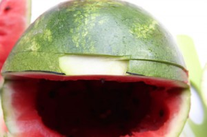 Melone9